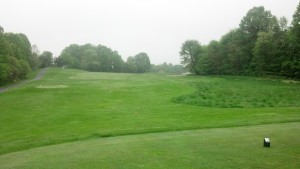 Hampshire Greens #7.  It's out there somewhere.