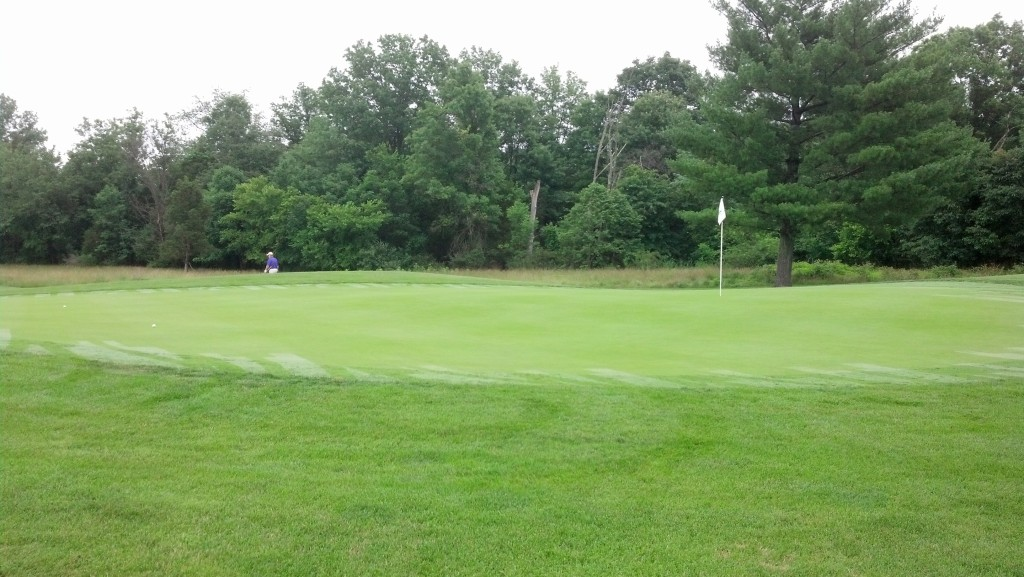 On the green on #2.  Man aged to 2-putt for a good par.