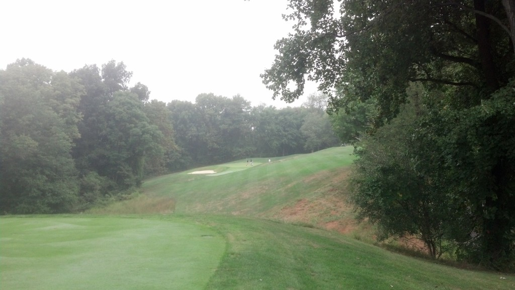 13th hole at Waverly Woods.  There's a green out there.  I swear.
